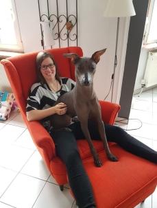 ... doch auch den Sessel musste Dante unbedingt ausprobieren. Ist ja egal, dass da schon jemand sitzt. :-)