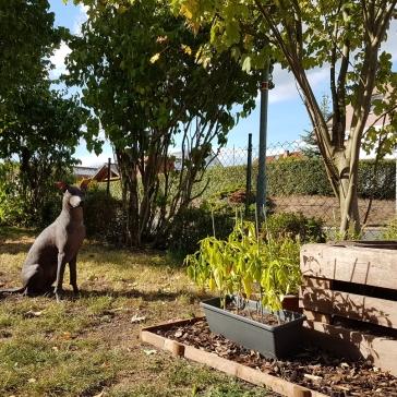 ... und noch lieber im Garten